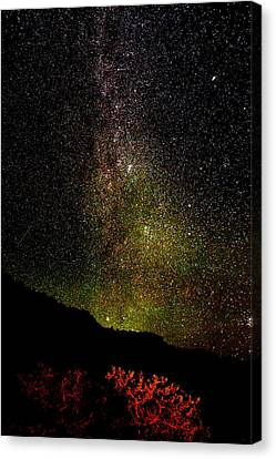 Canvas Print featuring the photograph Under The Milky Way by Greg Norrell