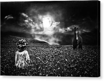 Under The Moonlight Canvas Print by Sabine Peters