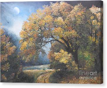 Under The Moonlight  Canvas Print by Sorin Apostolescu