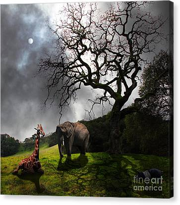 Under The Old Oak Tree - 5d21097 - Square Canvas Print by Wingsdomain Art and Photography
