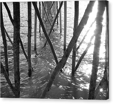 Canvas Print featuring the photograph Under The Pier by Ramona Johnston