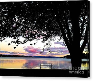 Under The Tree Canvas Print by Margie Amberge