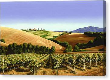 Grape Vines Canvas Print - Under The Tuscan Sky by Michael Swanson