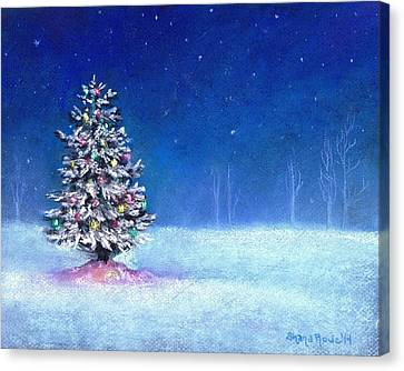 Underneath December Stars Canvas Print by Shana Rowe Jackson
