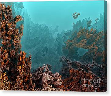 Underwater 6 Canvas Print by Bernard MICHEL