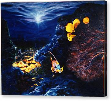 Underwater Paradise Canvas Print by Dan Townsend