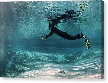 Underwater Photography Canvas Print by Michael Szoenyi