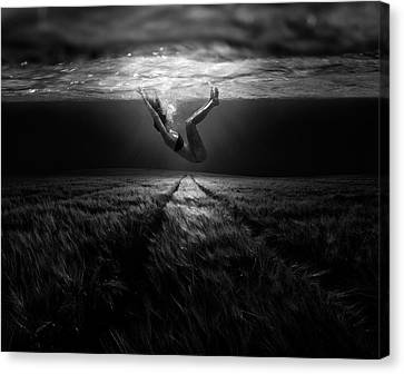 Underwaterlandream Canvas Print by Peter Majkut