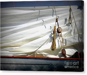 Unfurled Sail Canvas Print by Lainie Wrightson
