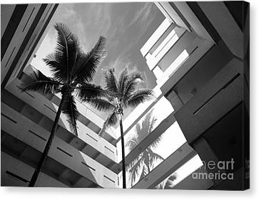 University Of Miami Business Administration Courtyard Canvas Print by University Icons
