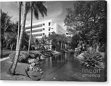 University Of Miami School Of Business Administration  Canvas Print by University Icons