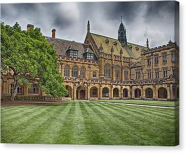 University Of Sydney Quadrangle  Canvas Print by Douglas Barnard