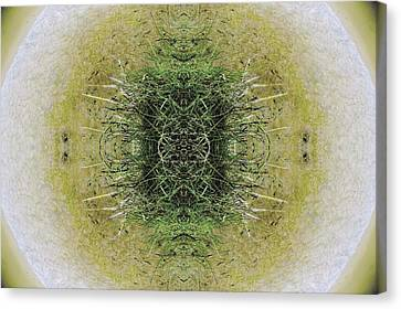 Fractal Orbs Canvas Print - Unnatural 6.1 by Giovanni Cafagna