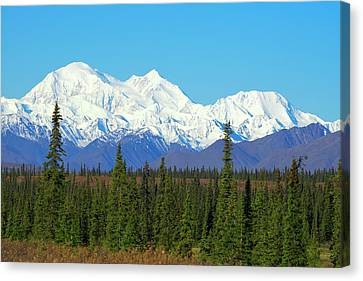 Unofficially Called Denali, Mt Canvas Print by Rick Daley