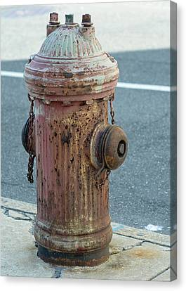 Fire Hydrant Canvas Print - Unsung Hero by Lisa Phillips