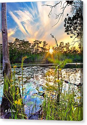 Canvas Print featuring the photograph Yellow Wild Flowers Swamp Sunset Blue Sky Reflection Art Prints by Eszra