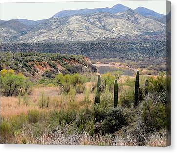Carefree Arizona Canvas Print - Untamed Arizona by Gordon Beck