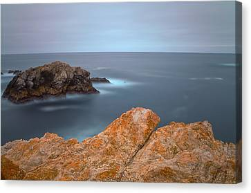 Canvas Print featuring the photograph Awaiting by Jonathan Nguyen