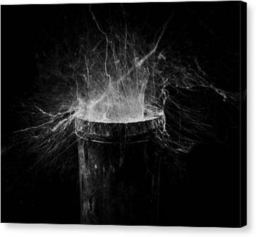 Untitled Cobweb Canvas Print by Julian Cook