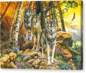 Wolf Mother And Cubs Canvas Print by John Francis