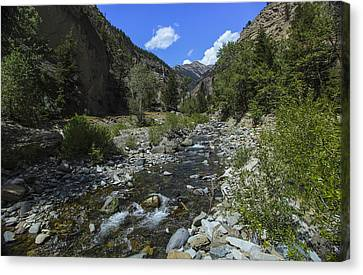 Up A Creek Canvas Print