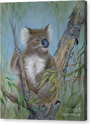 Up A Gum Tree Canvas Print by Rita Palm