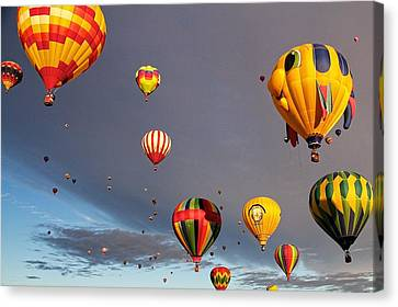 Canvas Print featuring the photograph Up And Away by Dave Files