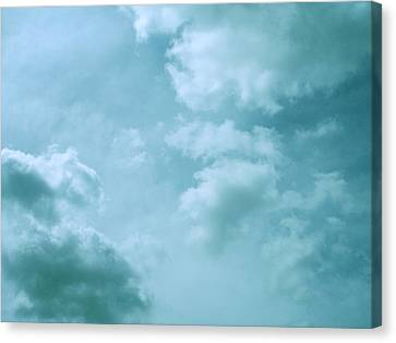 Up Into The Heavens Canvas Print by Mary Wolf