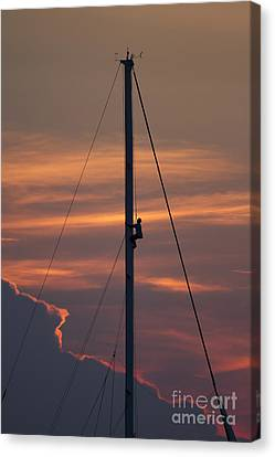 Up The Mast Of 72ft Alden Yacht Fearless Canvas Print by Dustin K Ryan
