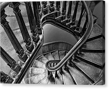 Up The Side - Bw Canvas Print by Nikolyn McDonald