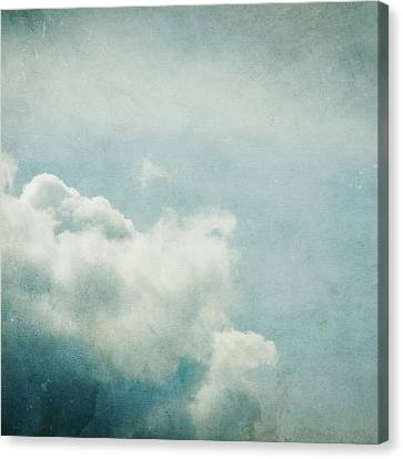 Up There Canvas Print by Violet Gray