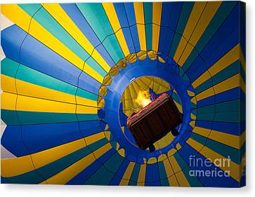 Up Up And Away Canvas Print by Inge Johnsson