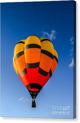 Up Up And Away Canvas Print by Robert Bales