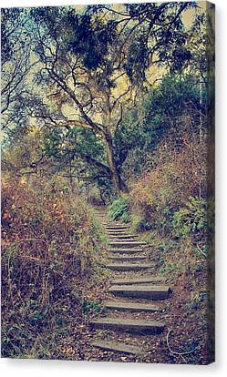Up We Go Canvas Print by Laurie Search