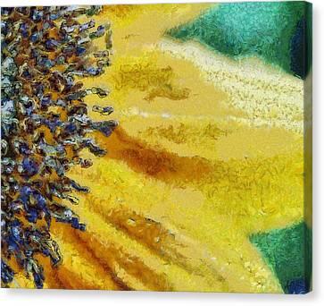 Upclose Canvas Print
