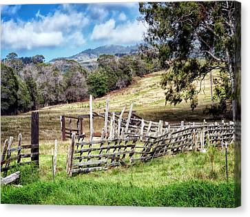 Upcountry 2 Canvas Print by Dawn Eshelman