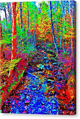 Upland Trail 2014 221 Canvas Print