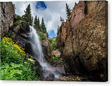 Upper Booth Falls Canvas Print by Michael J Bauer