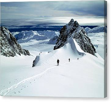 Upper Fox Glacier Westland Np New Canvas Print by Panoramic Images