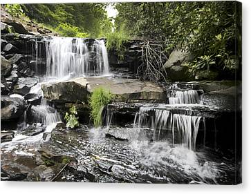 Upper Goose Creek Falls Canvas Print by Robert Camp