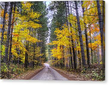 Upper River Road In Fall Canvas Print