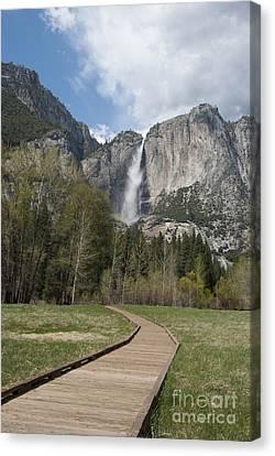 Upper Yosemite Falls Canvas Print by Juli Scalzi