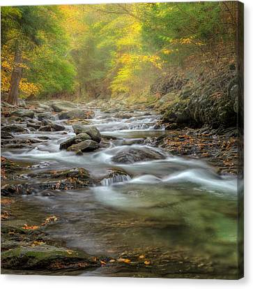 Upstream Fog Square Canvas Print by Bill Wakeley