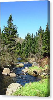 Upstream Canvas Print by Will Boutin Photos