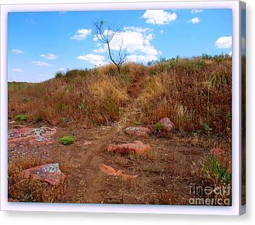 Upward Trail Canvas Print