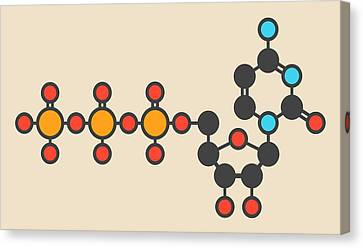 Uridine Triphosphate Molecule Canvas Print by Molekuul