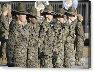 U.s. Marine Corps Female Drill Canvas Print by Stocktrek Images
