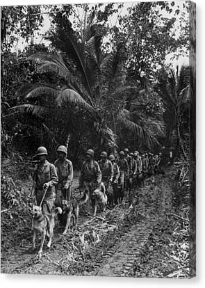 Working Dog Canvas Print - U.s. Marine Raiders And Their Dogs by Everett