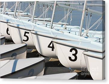 Us Navy Training Sailboats I Canvas Print by Clarence Holmes