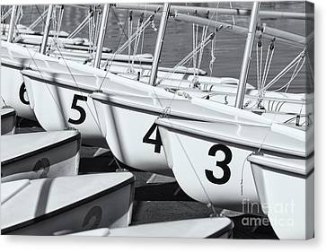 Us Navy Training Sailboats II Canvas Print by Clarence Holmes